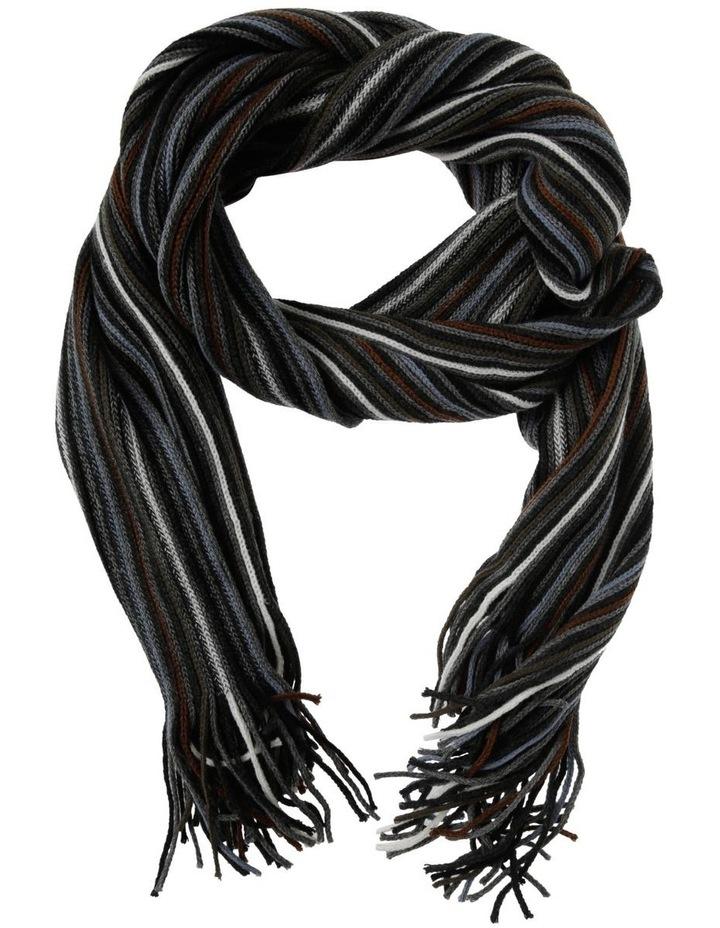 Multi Stripe Scarf image 1