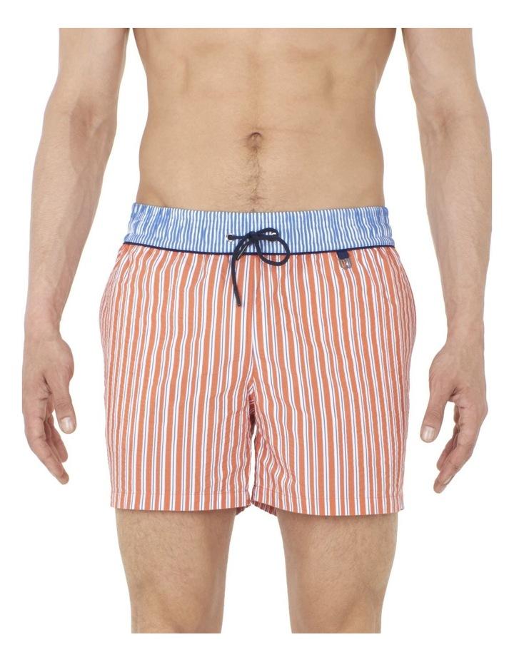 Preppy Beach Boxer Swim Short image 1