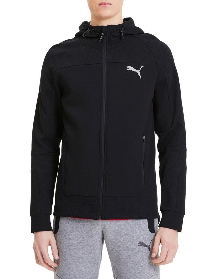 Evostripe Hooded Jacket image 1