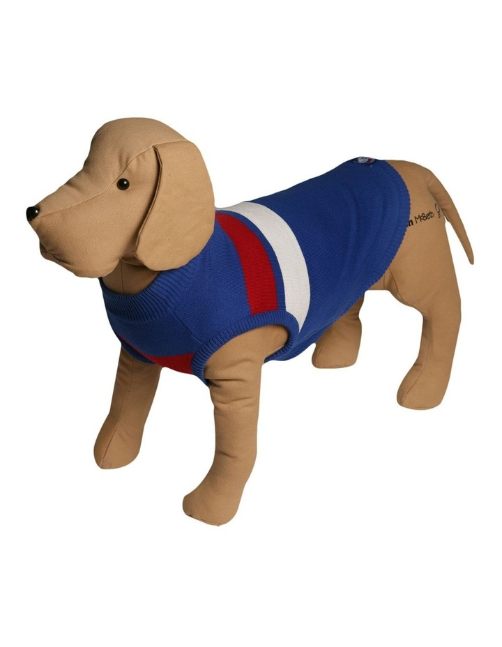 Western Bulldogs Pet Supporter Jumper Medium image 1