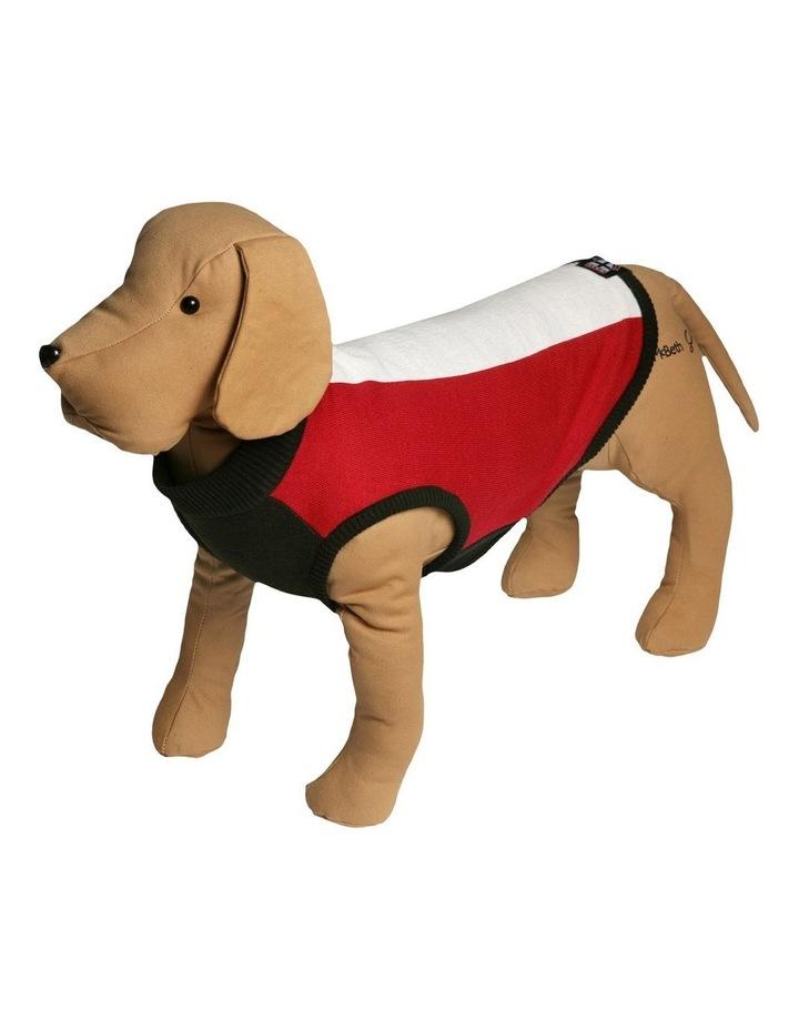 Saints Pet Supporter Jumper Medium image 1