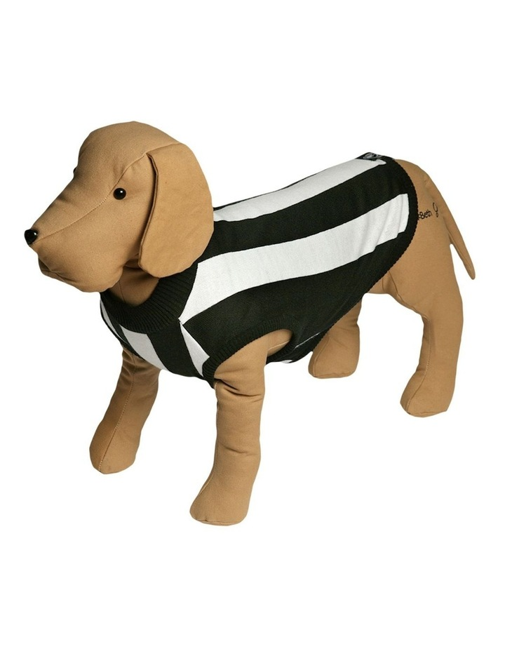 Collingwood Pet Supporter Jumper Small image 1