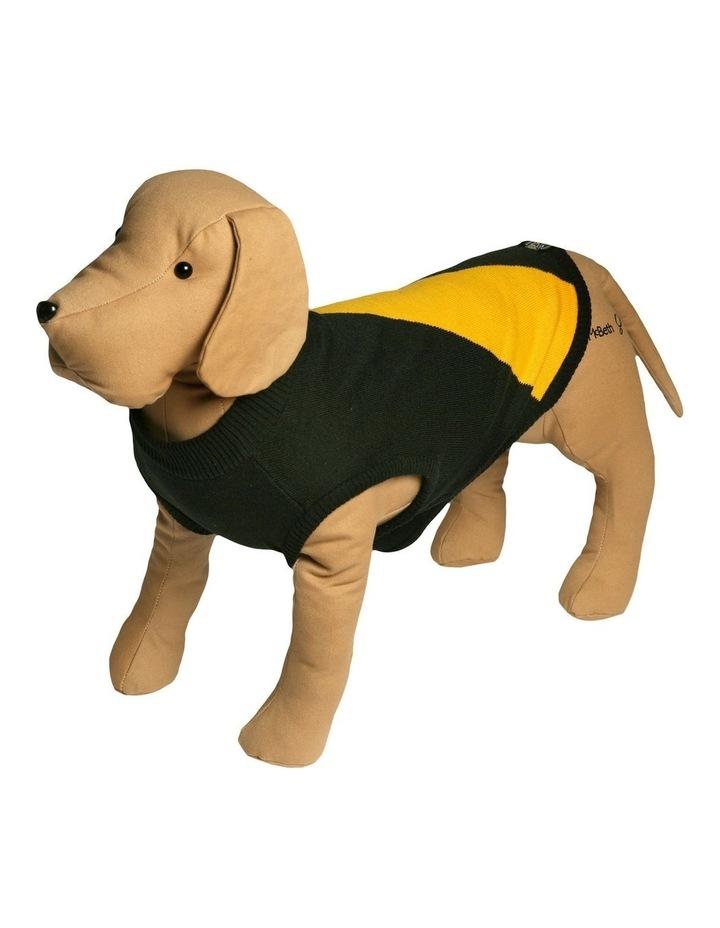 Richmond Pet Supporter Jumper Small image 1