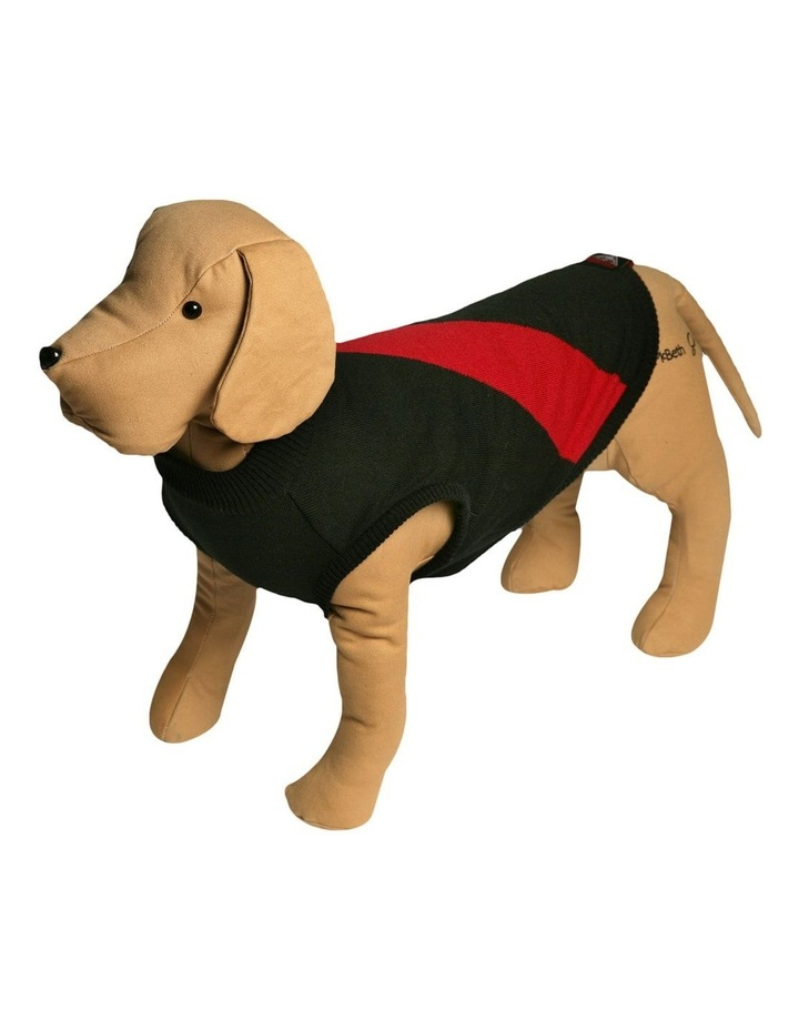 Essendon Pet Supporter Jumper Large image 1