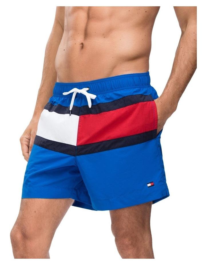 Core Flag Swimshort image 3