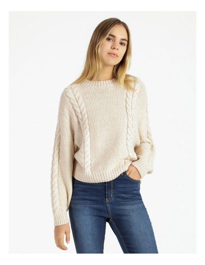Crew Neck Cable Knit Jumper image 1