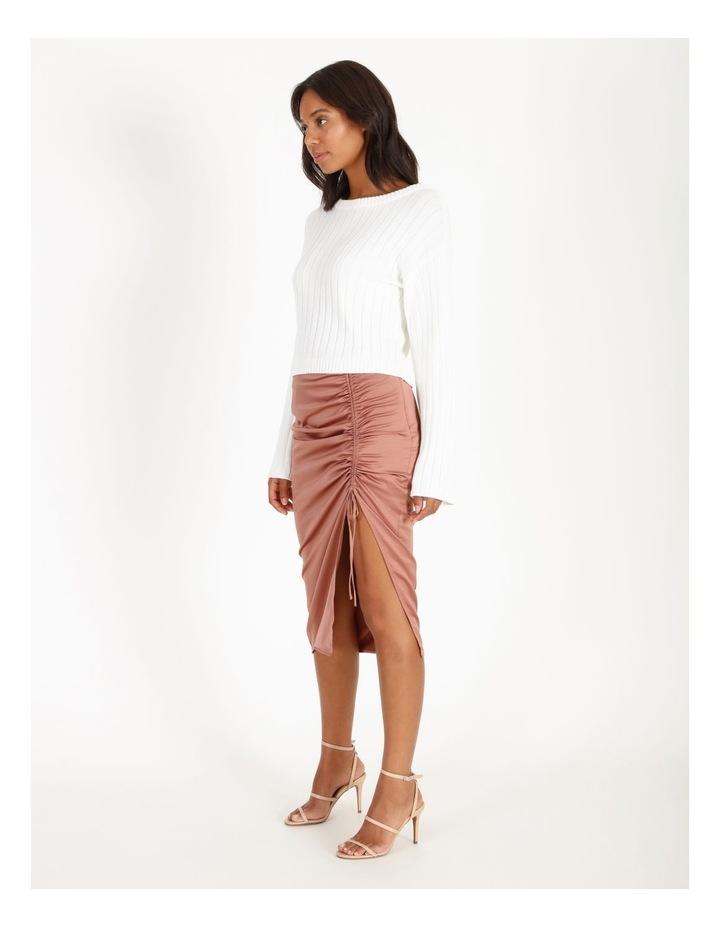 Slip Skirt image 2