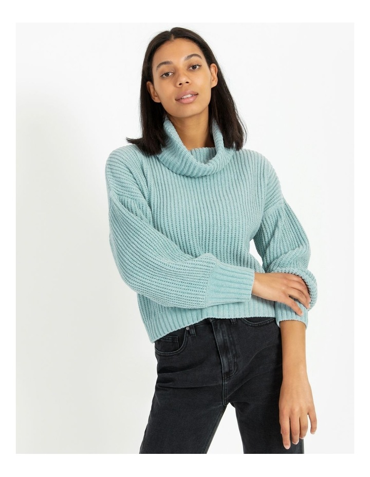 Roll Neck Cosy Knit image 1