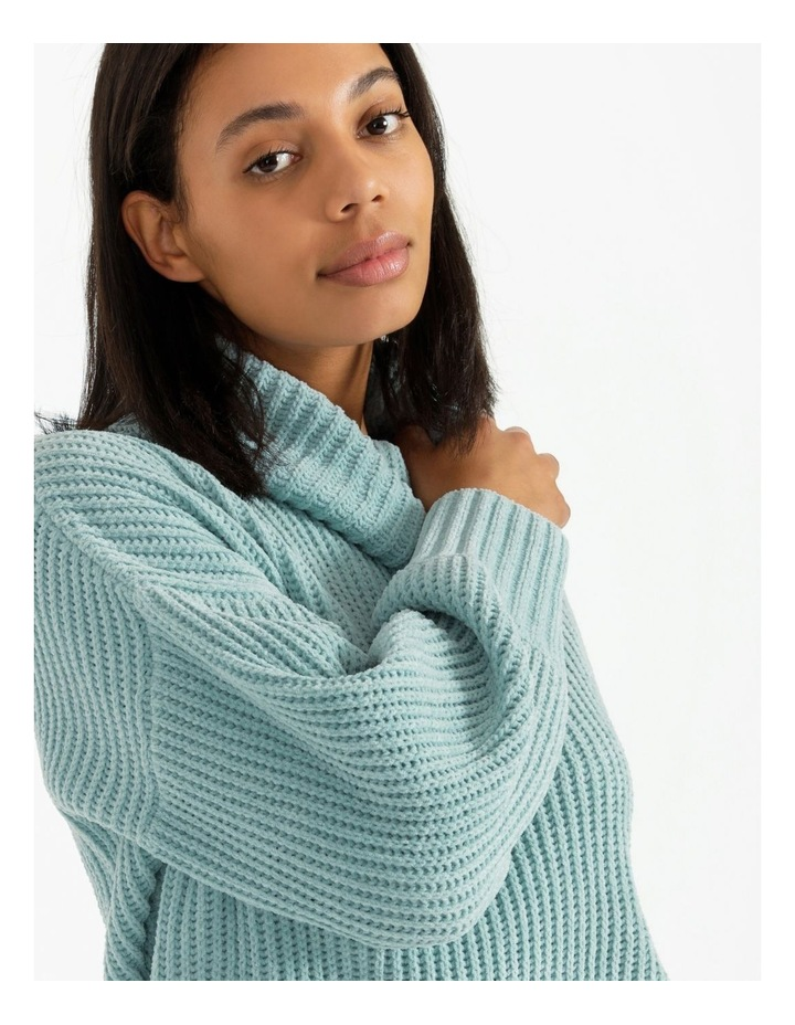 Roll Neck Cosy Knit image 6