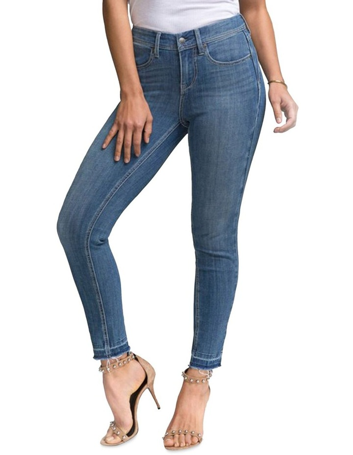 Boost Skinny Jeans (Curves 360) image 1
