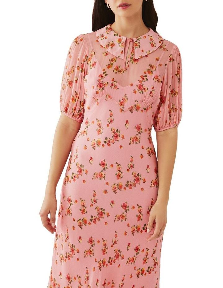 Sesame Dress image 4