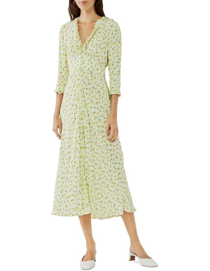 Nisha Dress image 1