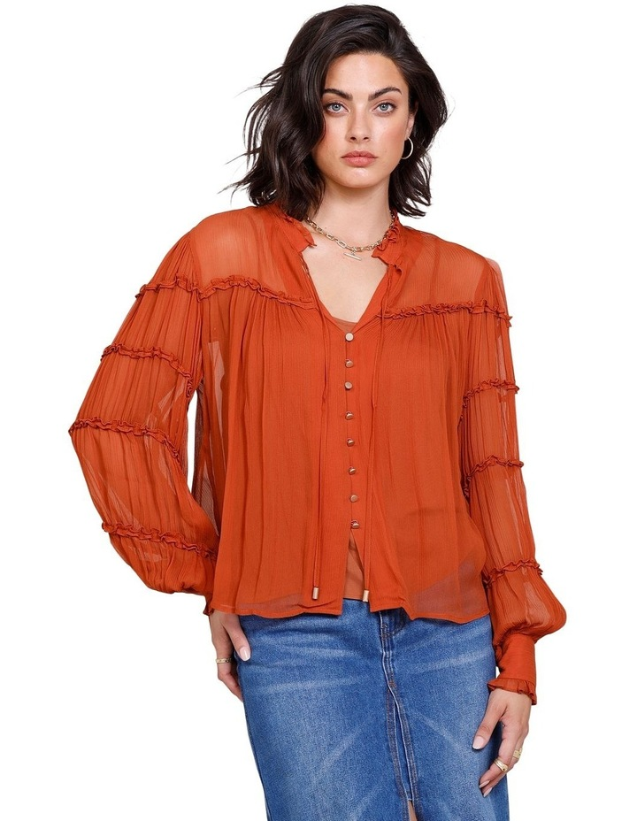 Coyote Blouse image 1