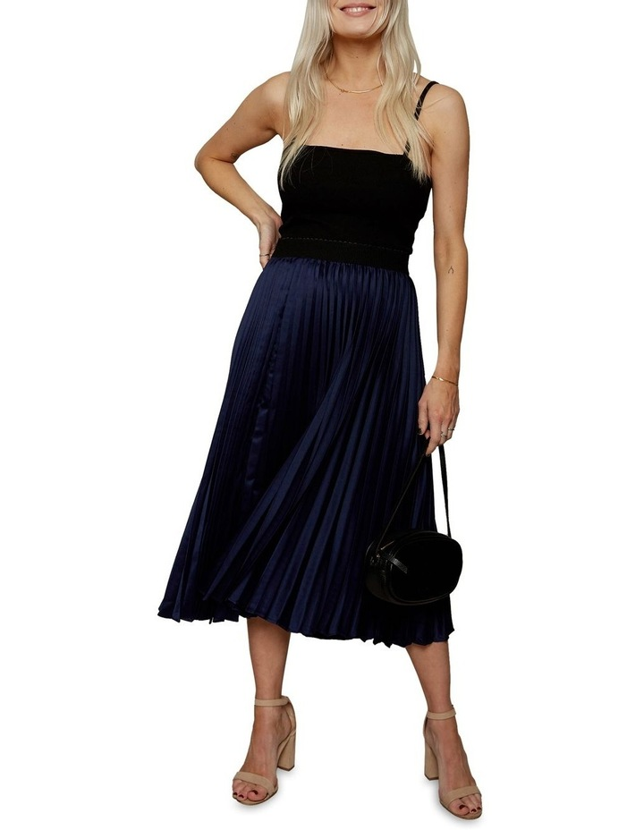 Pretty Pleat Skirt image 1