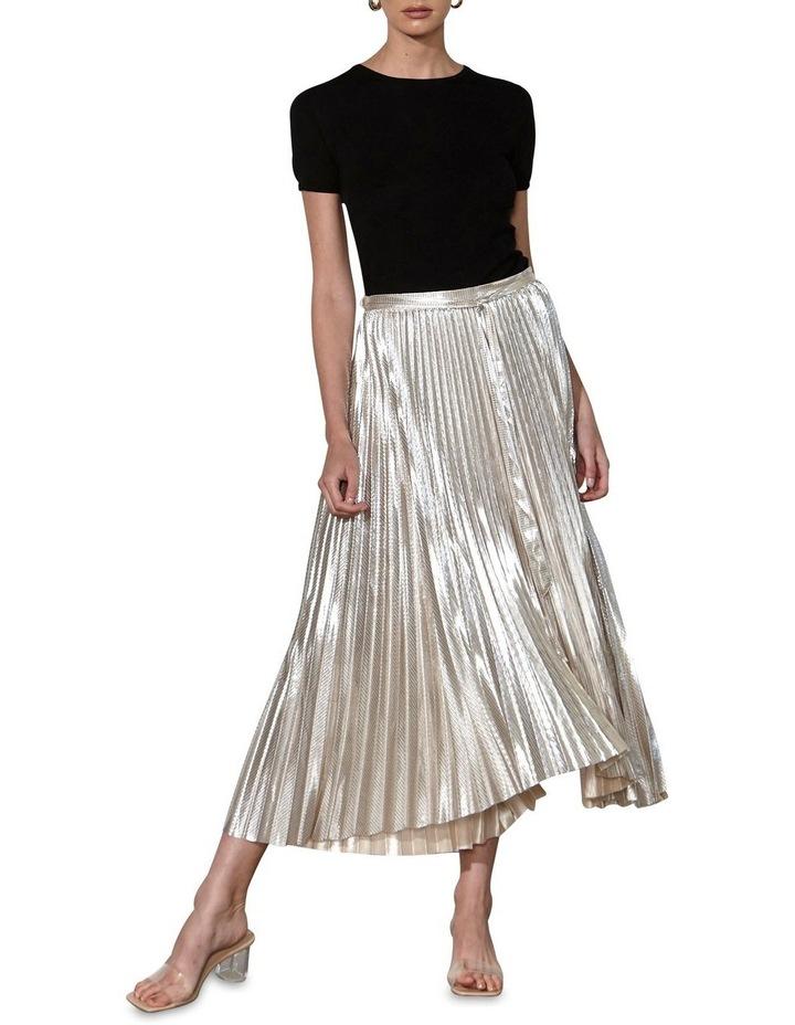 Dollar Days Skirt image 1