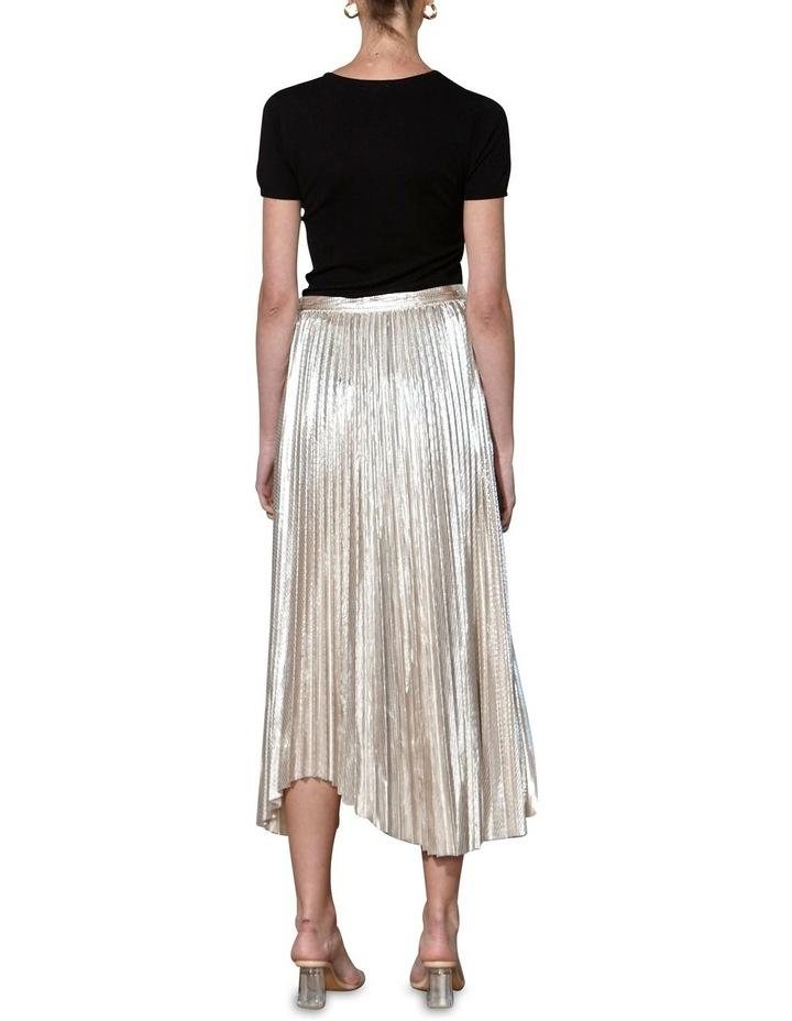 Dollar Days Skirt image 2