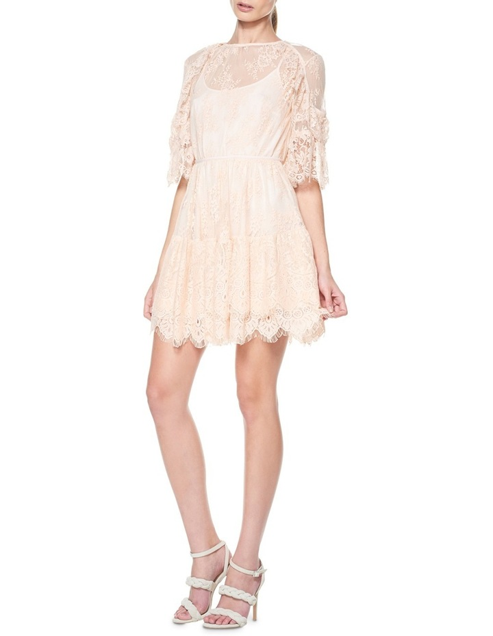 Everlasting Lace Mini Dress image 1