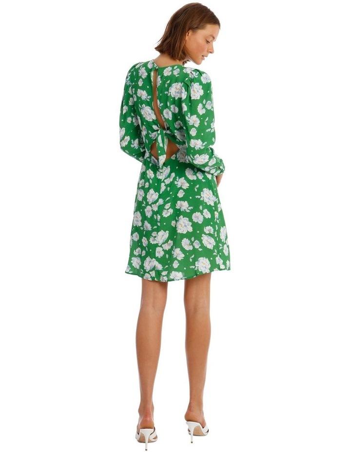 Evonna Dress image 3