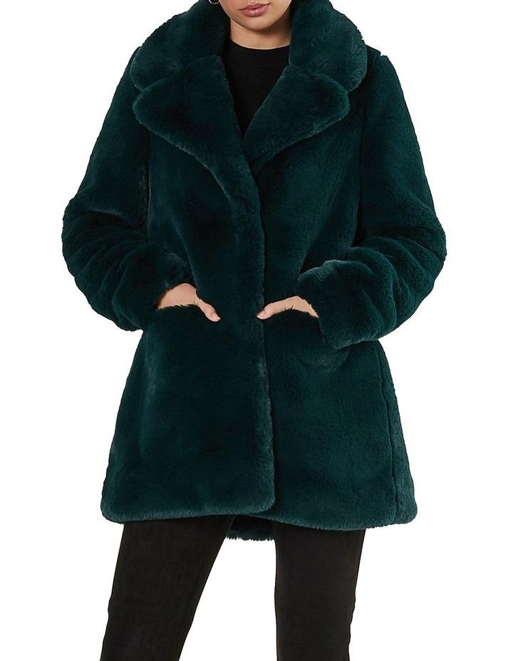 Mountain Coat image 1