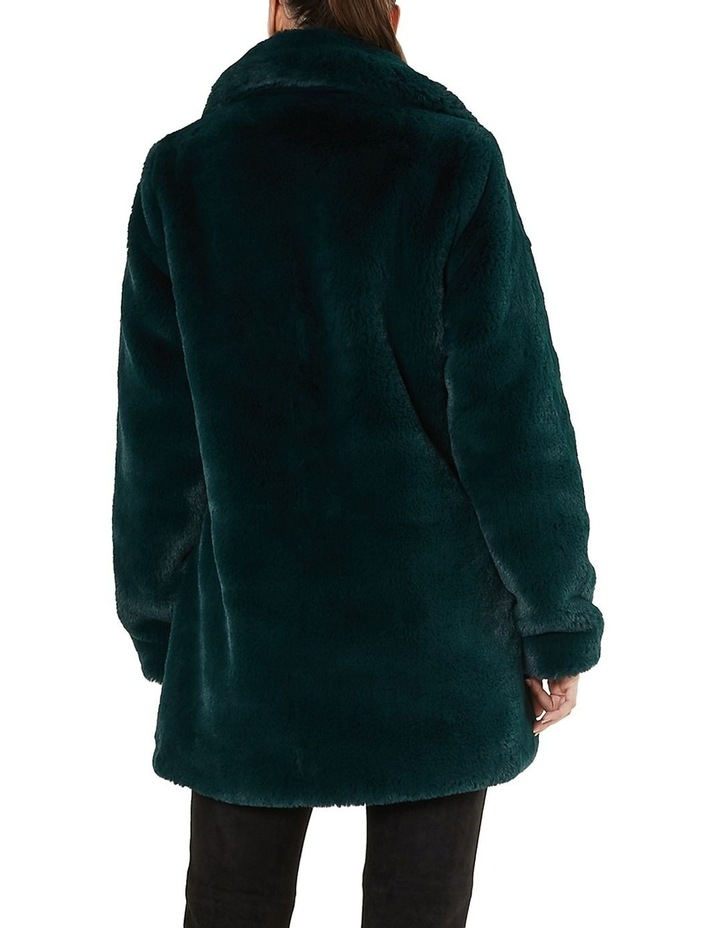 Mountain Coat image 3