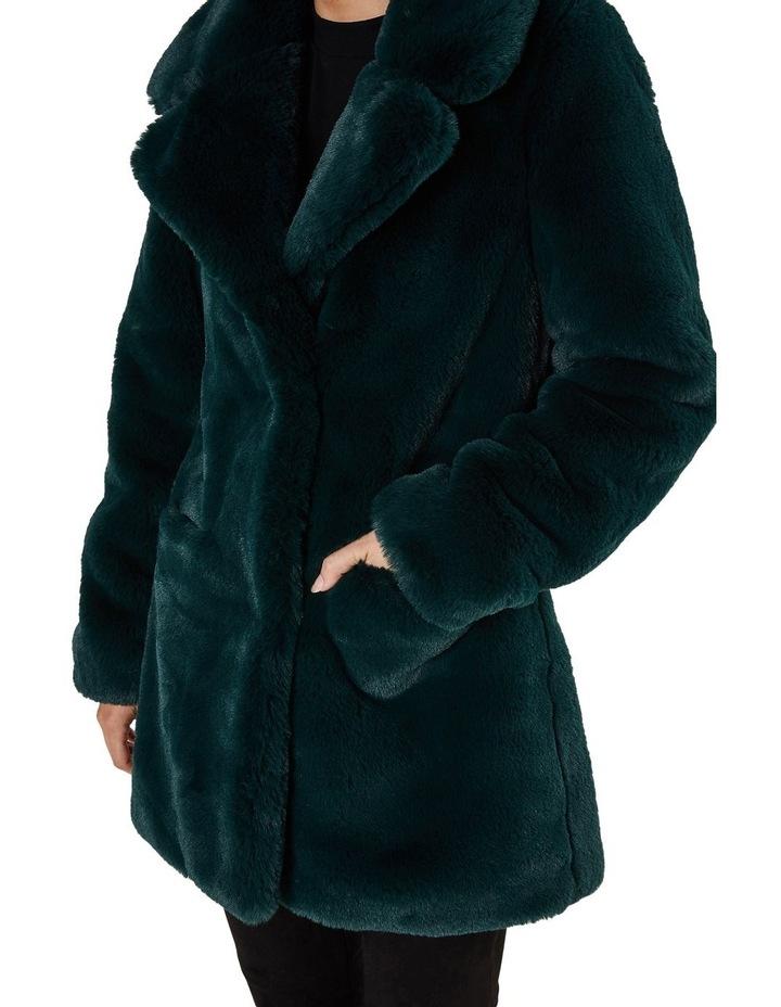 Mountain Coat image 4