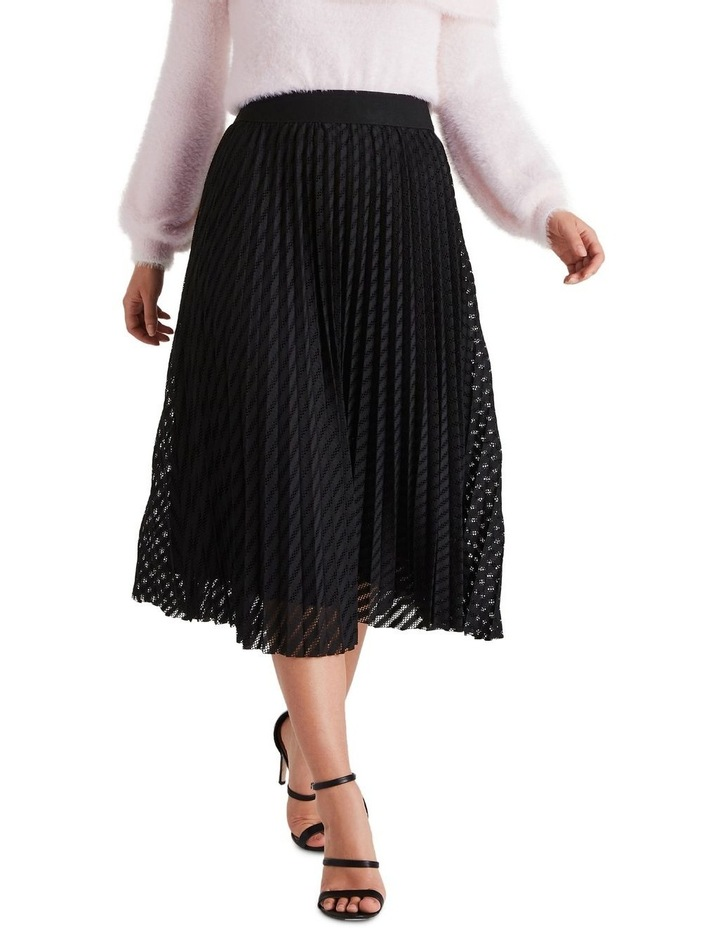 Canopy Skirt image 1