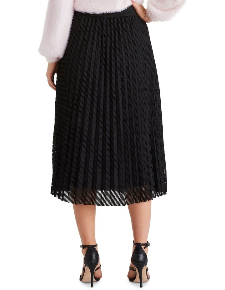 Canopy Skirt image 3