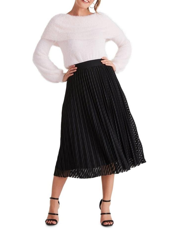 Canopy Skirt image 4