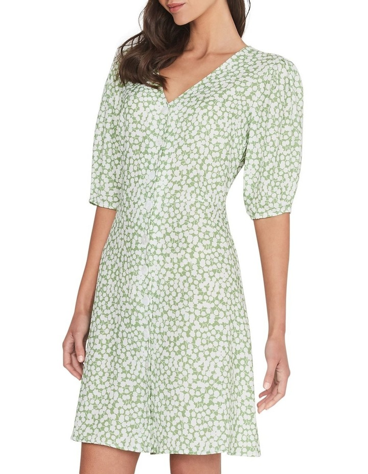Sugarcane Dress image 2
