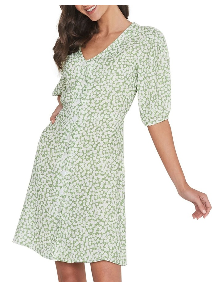Sugarcane Dress image 4