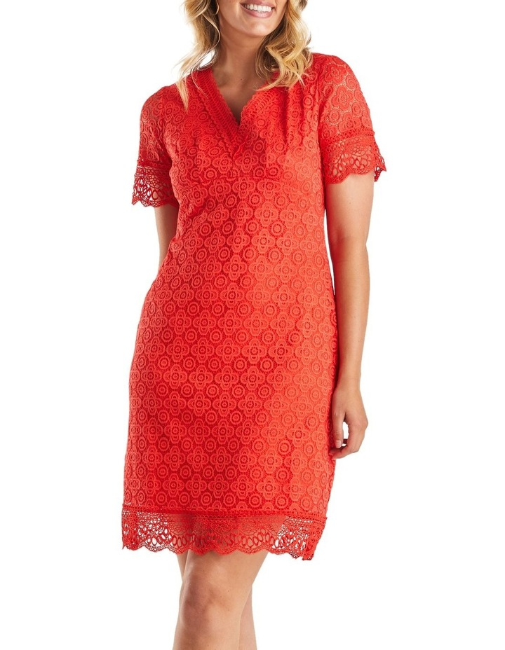 Rosetta Dress image 1