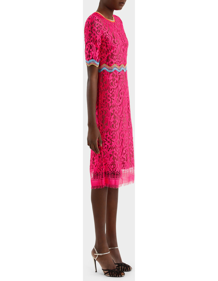 Lace Dress image 2