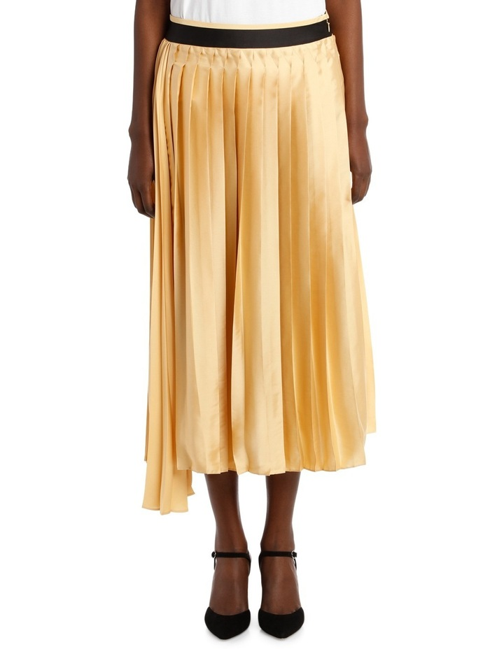 Double Pleat Skirt image 1