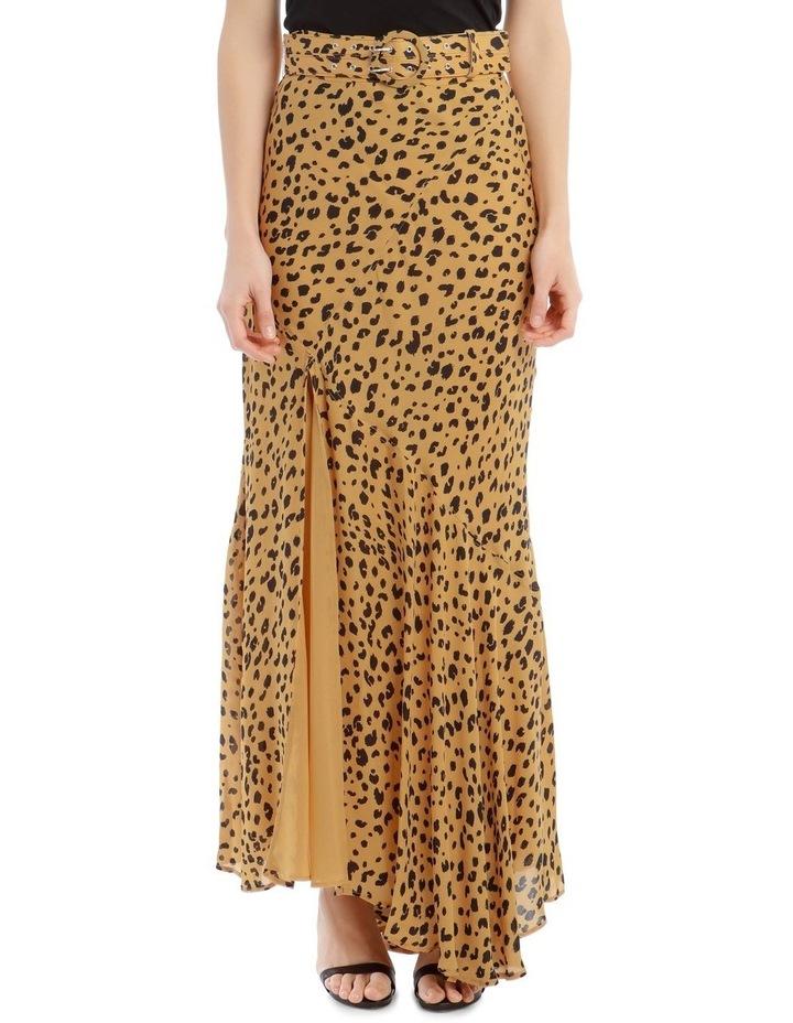 Asymmetrical Skirt image 1