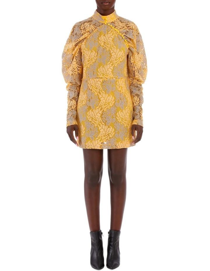 Lace Puff Sleeve Mini Dress image 1