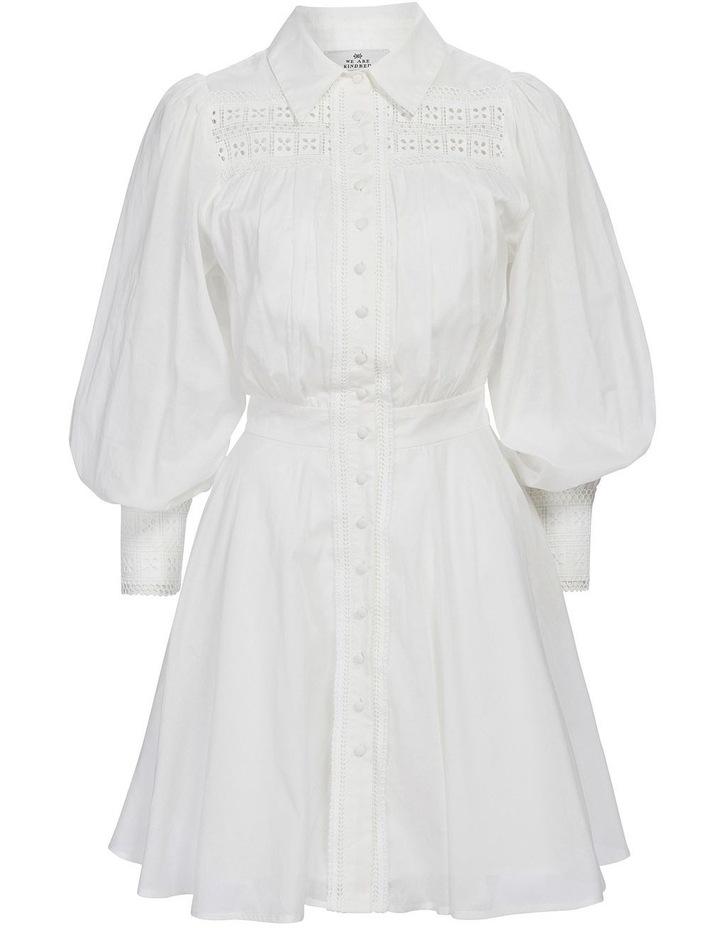 Sorrento Mini Dress image 4