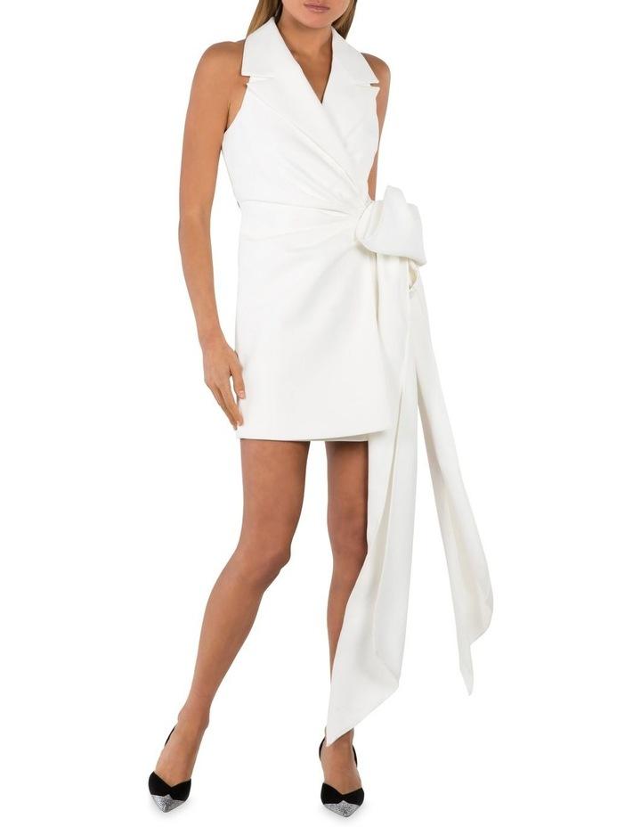 Varsha Mini Dress image 1