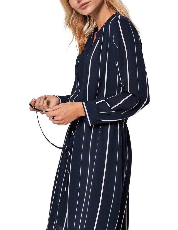 Damina Dress image 4