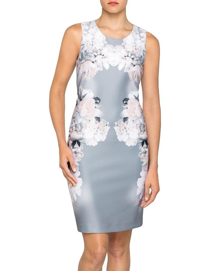 Scuba Floral Print Dress image 1