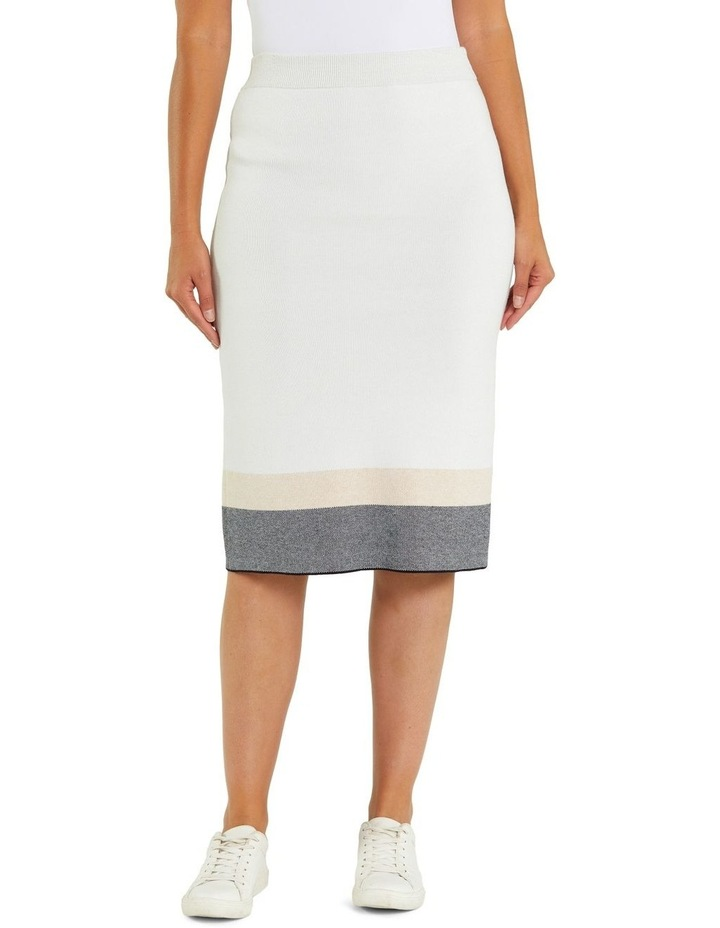 Colour Block Skirt image 1