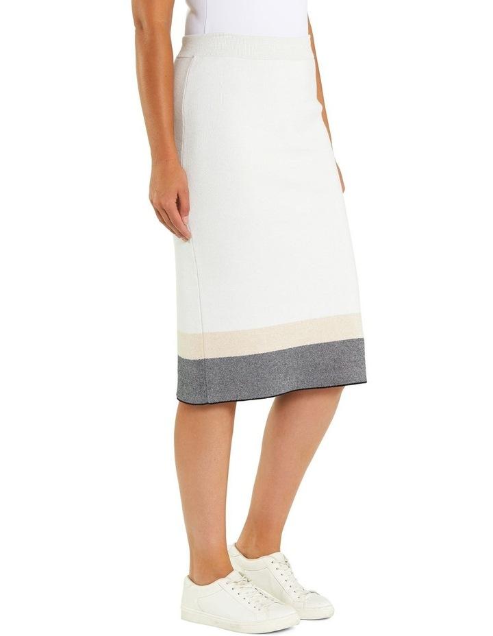 Colour Block Skirt image 2