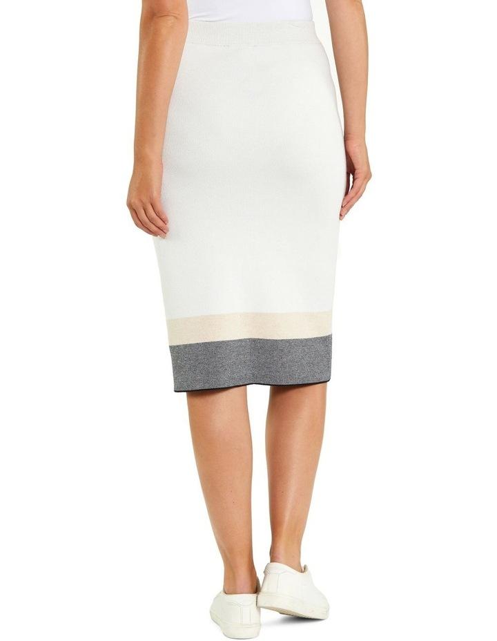 Colour Block Skirt image 3