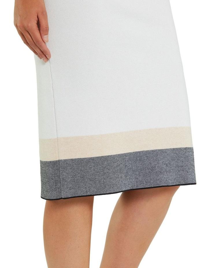 Colour Block Skirt image 4