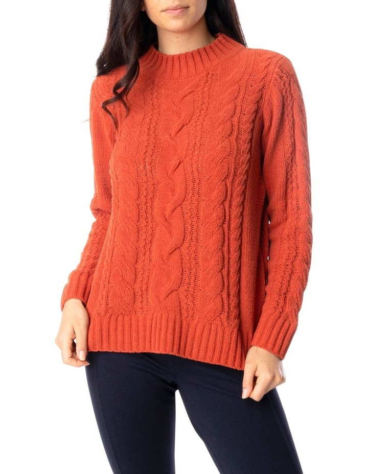Long Sleeve Chenille Cable Pullover image 1