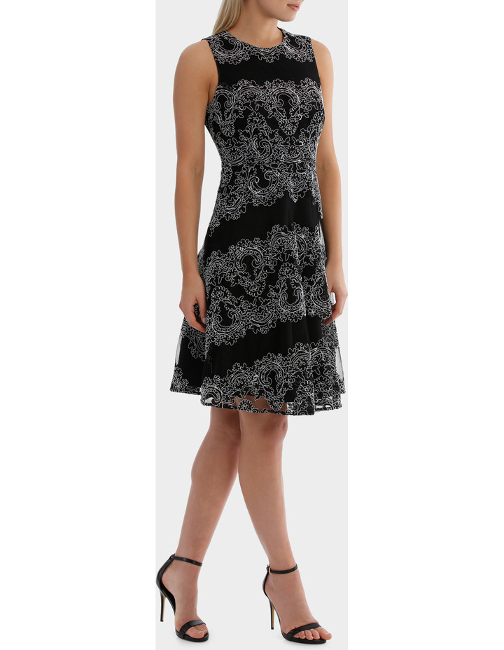 Cornelli Mesh Black And White Lace Dress image 2