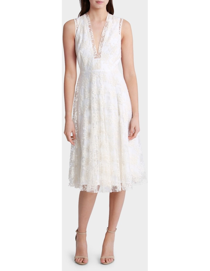 Embroidered Mesh Fit And Flare Dress image 1