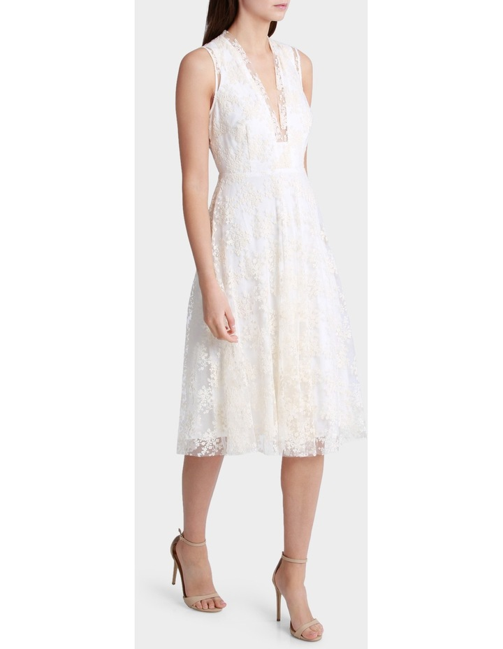 Embroidered Mesh Fit And Flare Dress image 2