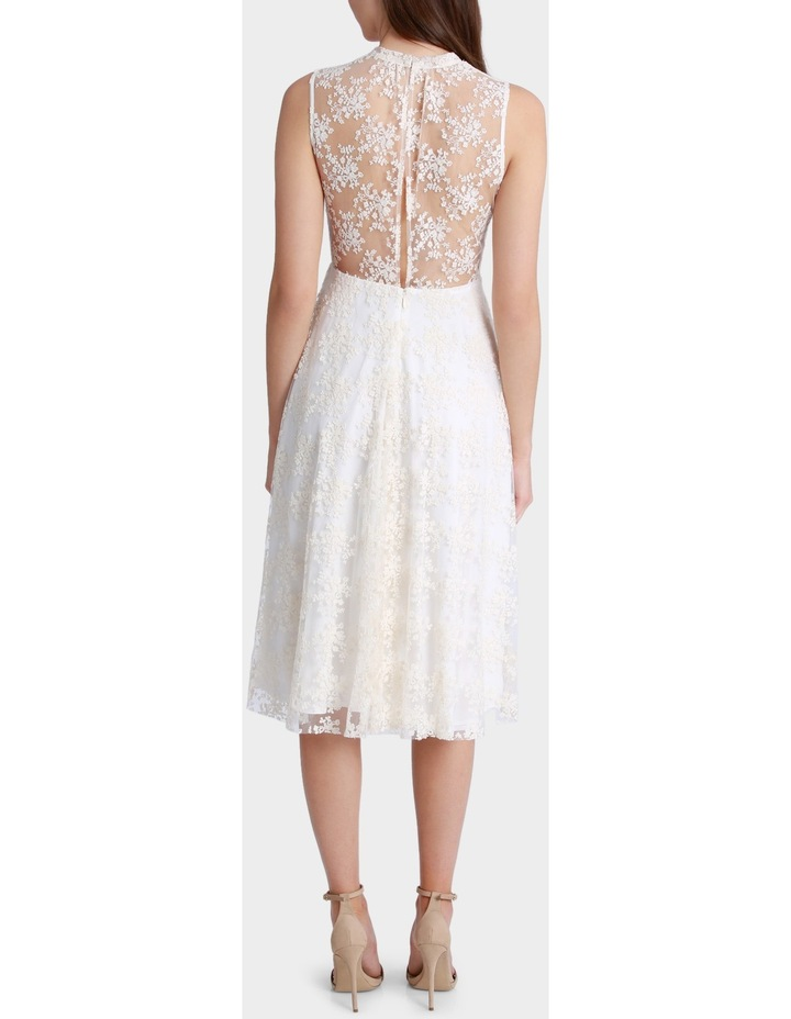 Embroidered Mesh Fit And Flare Dress image 3