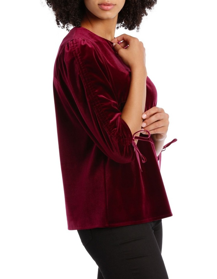 Rouched Sleeve Velvet Top image 2