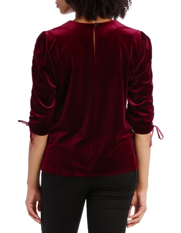 Rouched Sleeve Velvet Top image 3